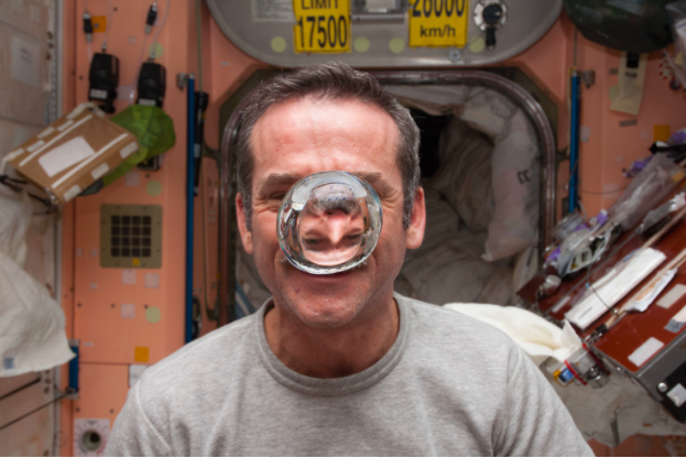 There is no problem so bad that you can't make it worse… an astronaut's guide to life on earth
